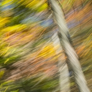 Valley Forge motion blur-